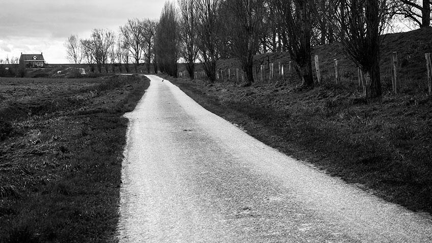 historie-boerderijen-tholen